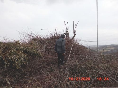 roccioletti - nido o rogo 1