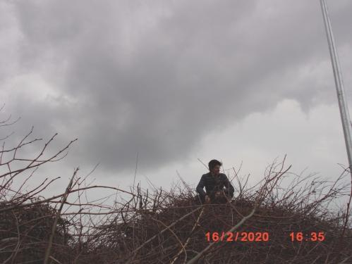 roccioletti - nido o rogo 4