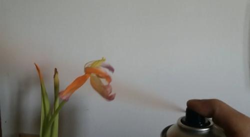 roccioletti - la natura imita l'arte