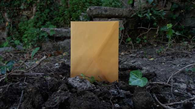 roccioletti - la lettera rubata 2