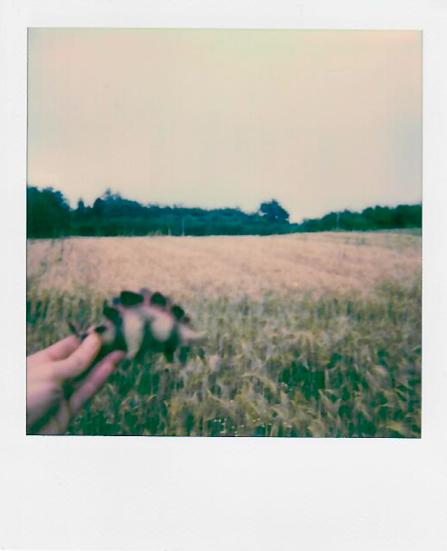 roccioletti - la memoria non è la storia 03
