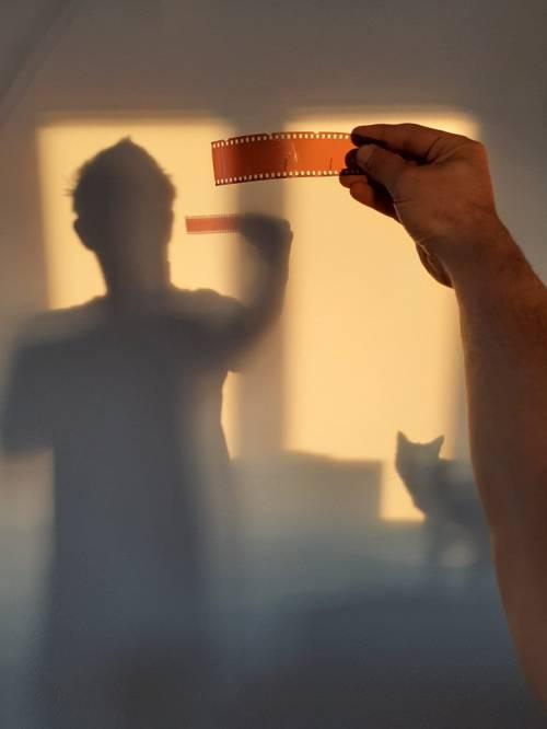 roccioletti - negativi con gatto