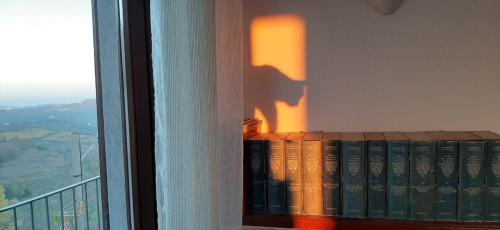 roccioletti - ombra